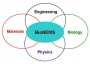 research:juh17:research:bionems_overview.png